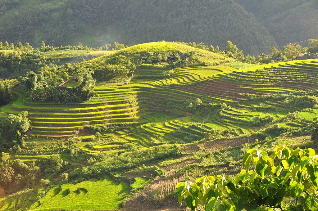 Sapa, Vietnam - Asie du Sud-Est