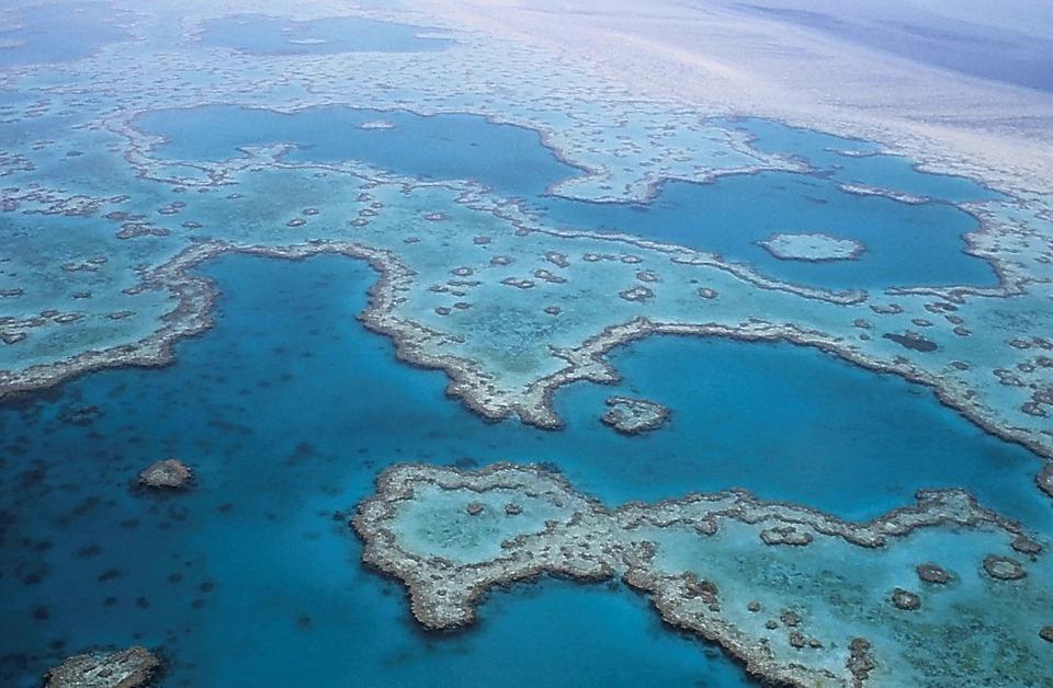 La grande barrière de Corail, Australie